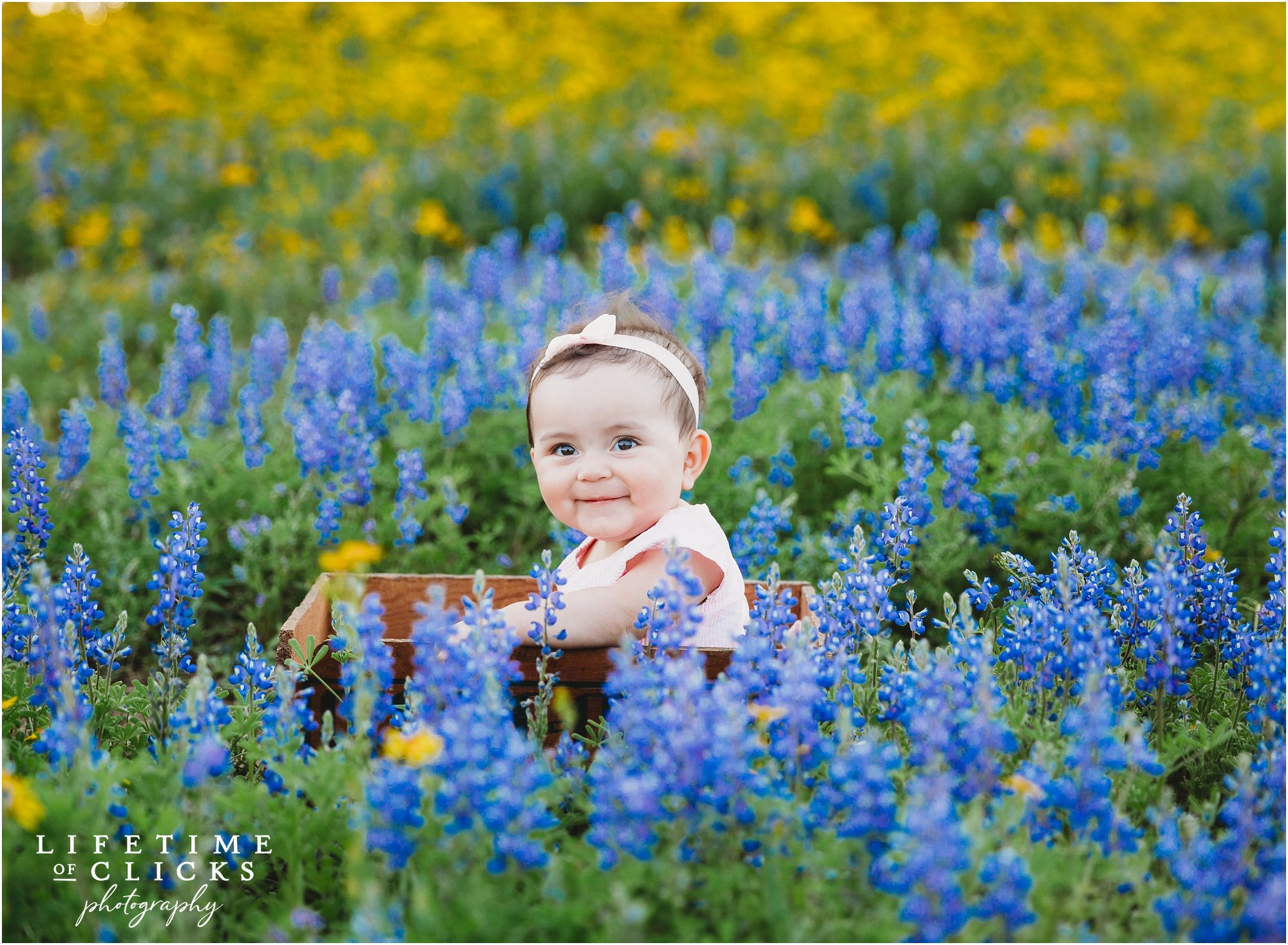 Baby during Houston Bluebonnets Sessions by Lifetime of Clicks Photography