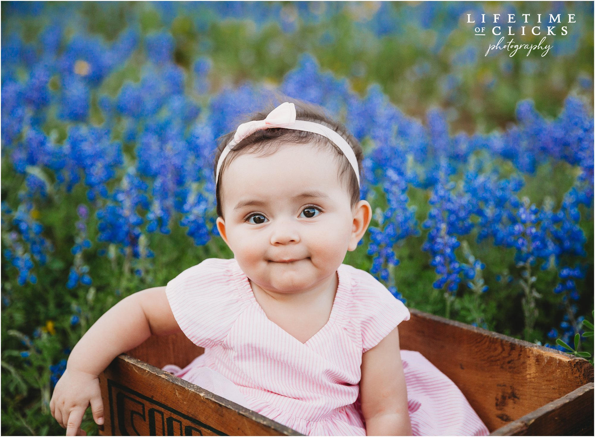 Child photography at Houston Bluebonnets Sessions by Lifetime of Clicks Photography