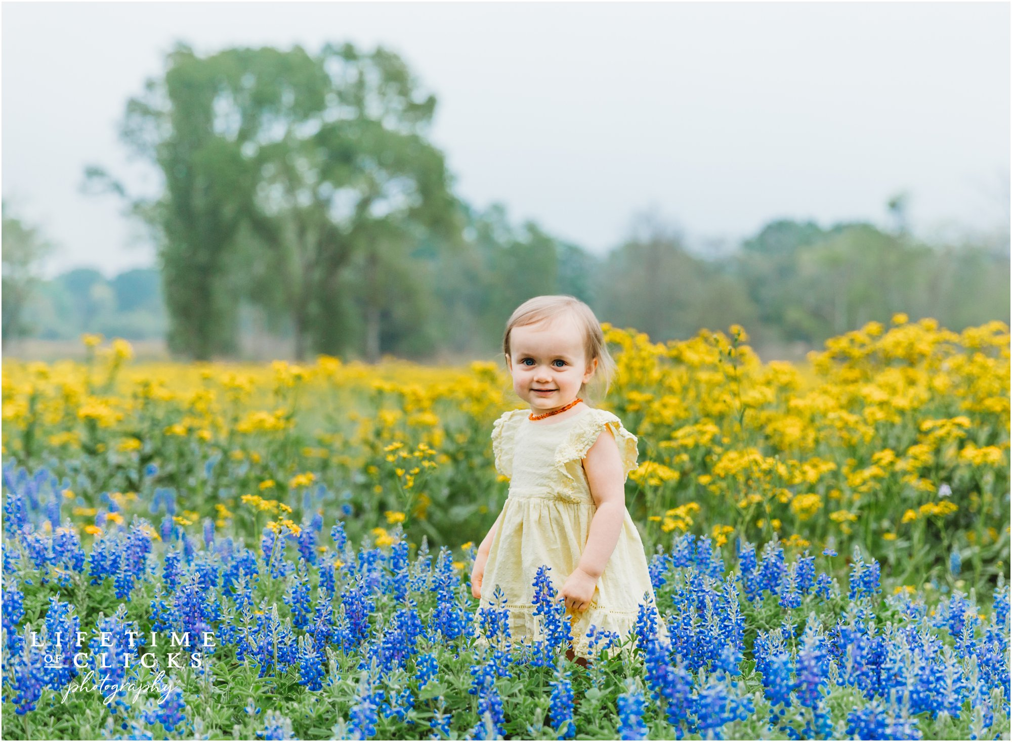 Children Bluebonnets Photographer