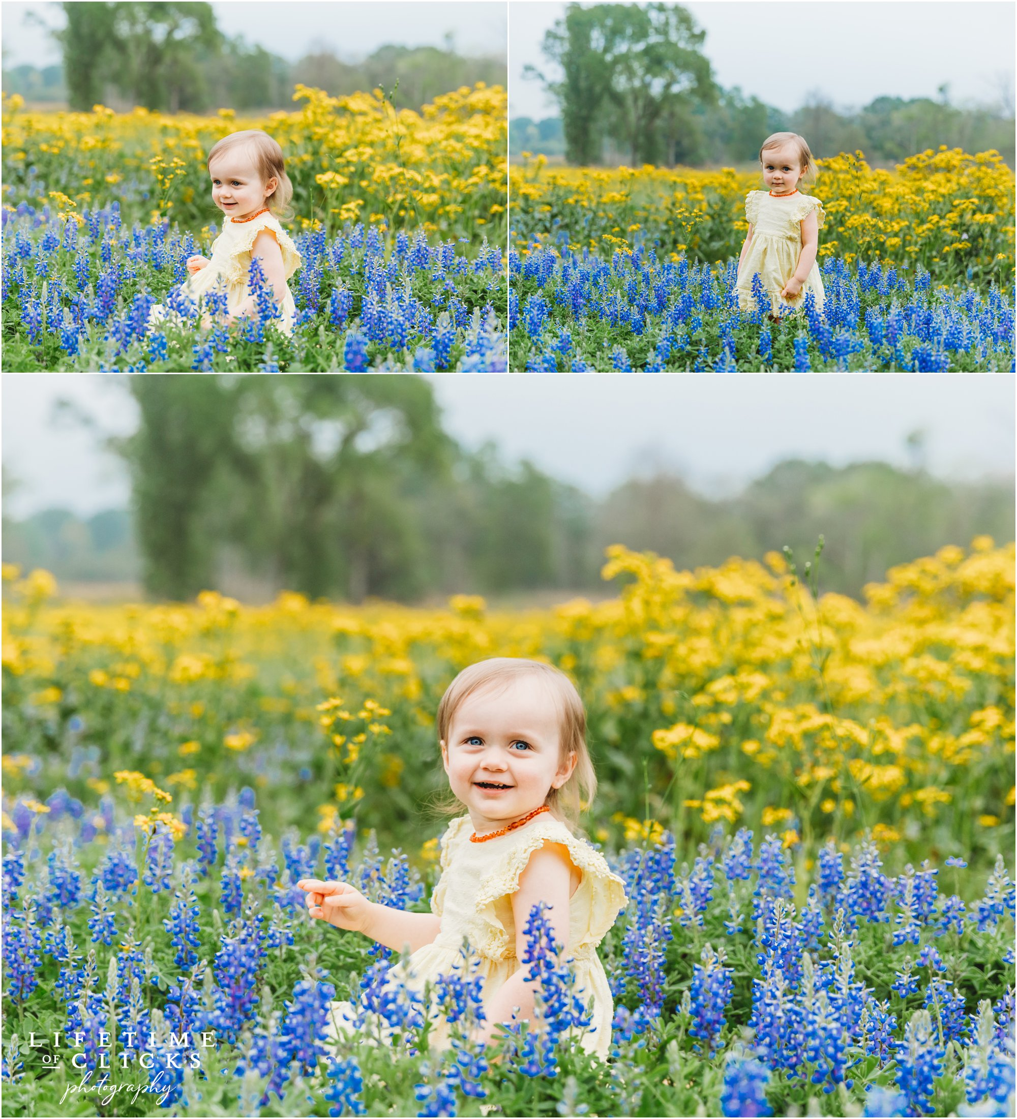 Little girl in Bluebonnets