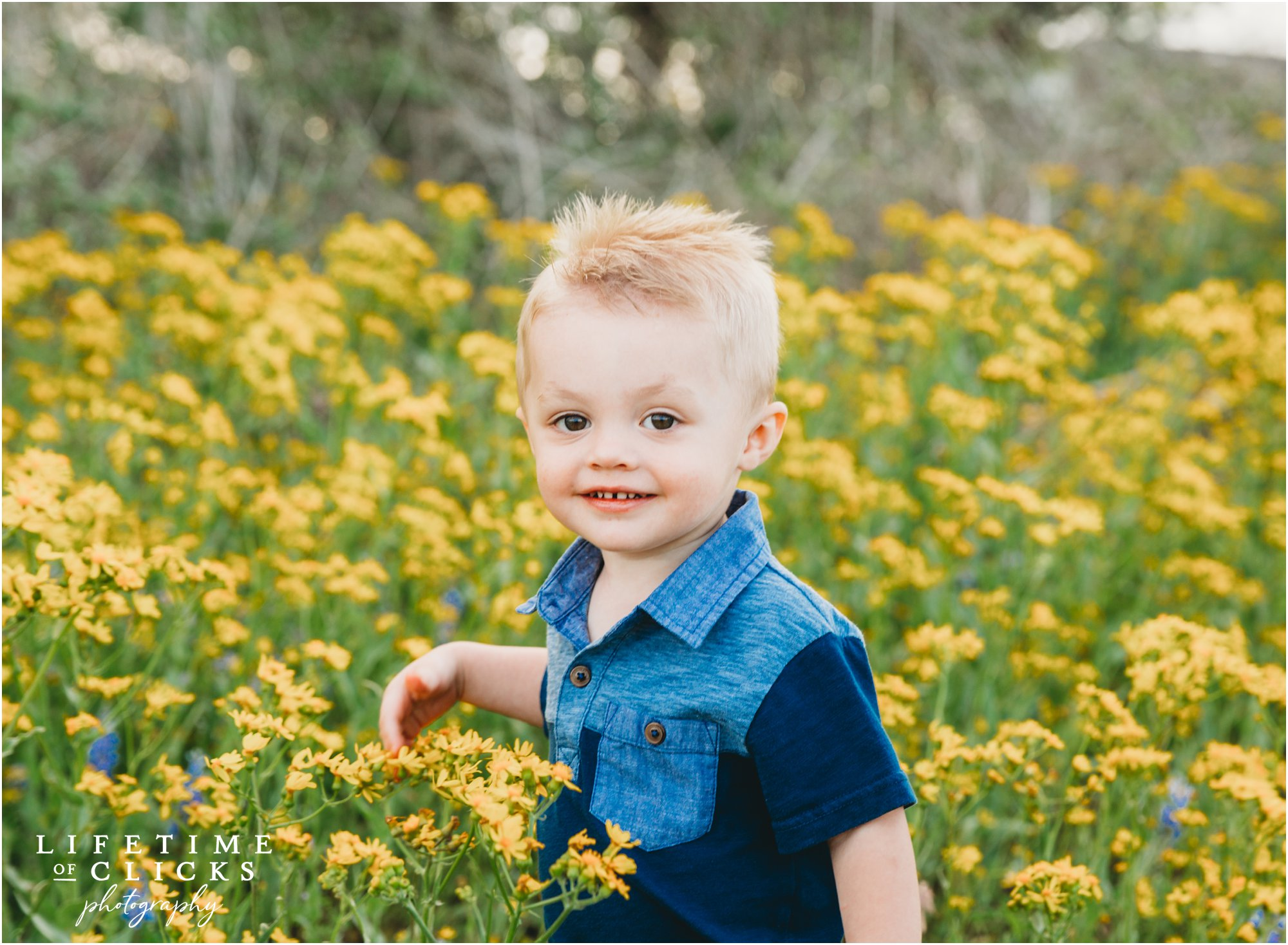 Little boy in bluebonnets