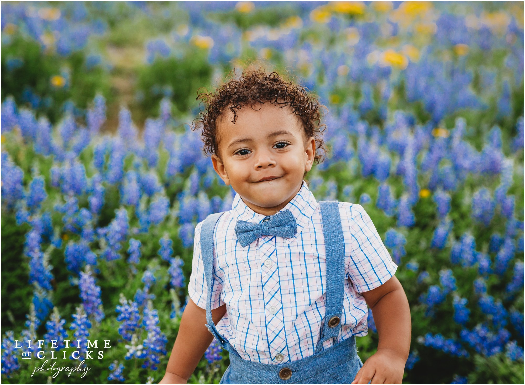little boy in bow tie and suspenders in bluebonnets