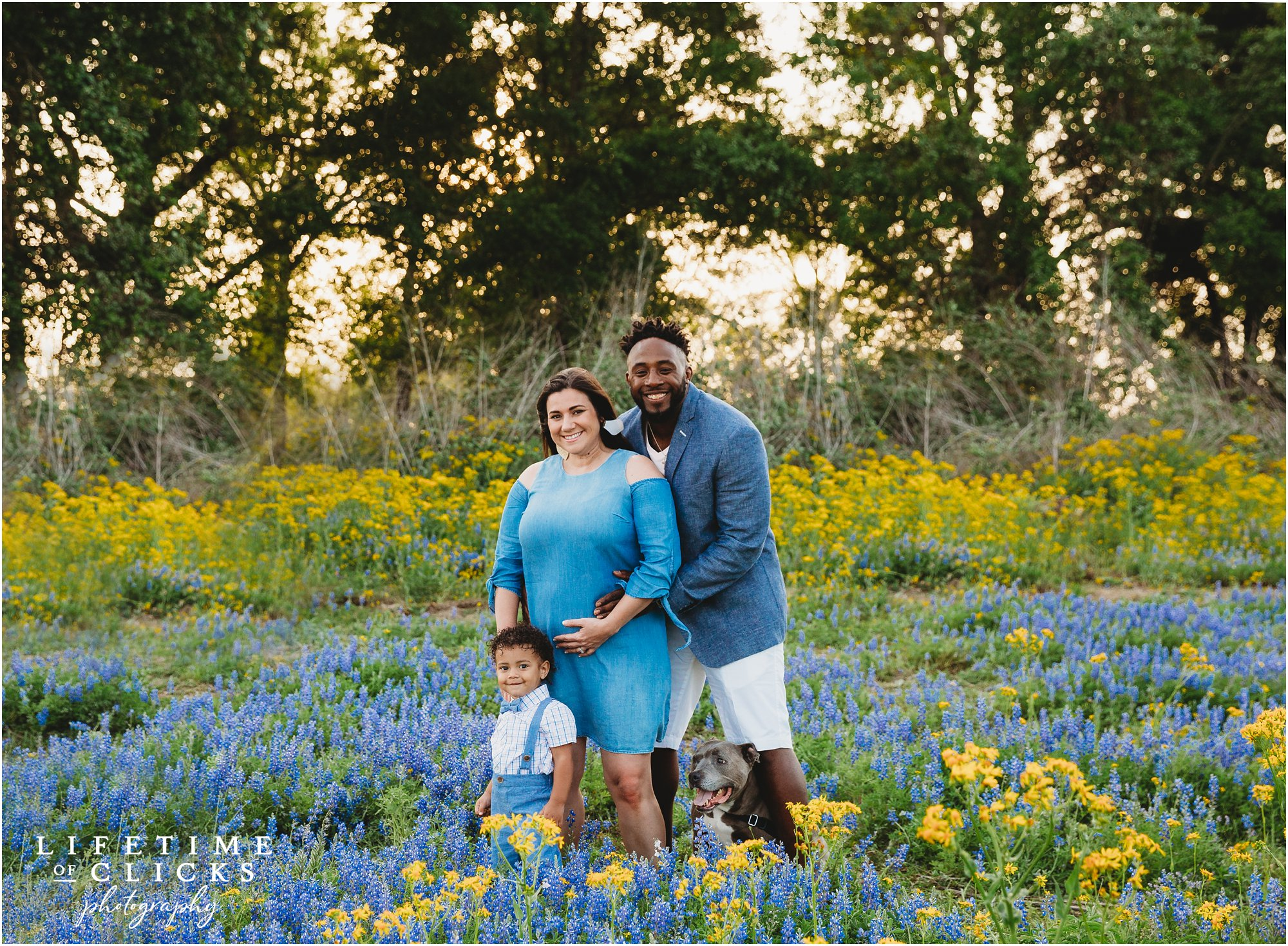 family photos during Houston Bluebonnets Sessions by Lifetime of Clicks Photography