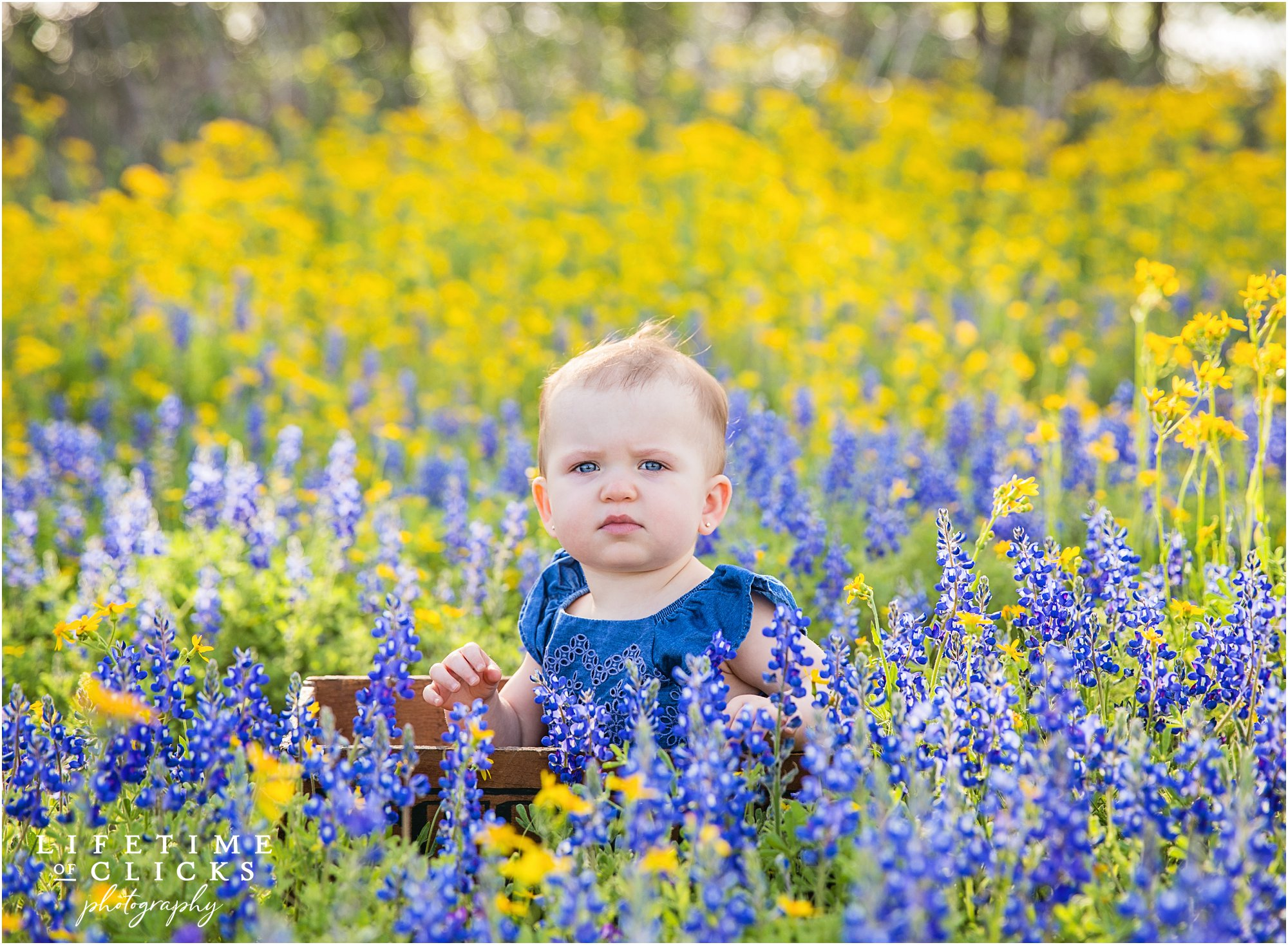 little girl during bluebonnets